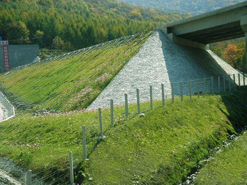 高速公路综合绿化